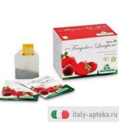 Infuso Fragola/Lampone 20buste