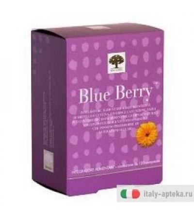New Nordic Blue Berry 120 compresse